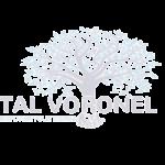 טל וורונל סדנאות דיבור בפני קהל